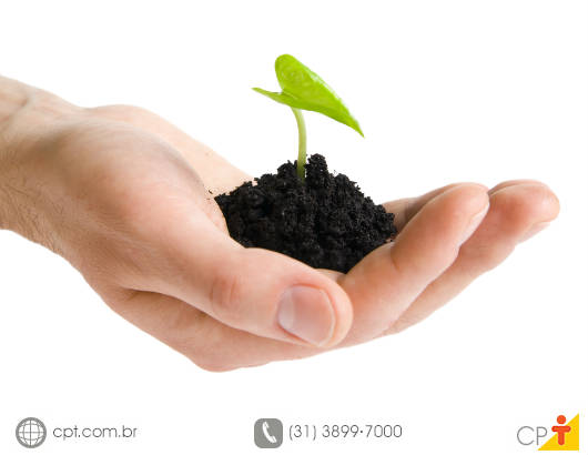 O banco de sementes do solo é formado, principalmente, por espécies pioneiras que, normalmente, apresentam dispersão a longa distância