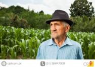 Controle das principais pragas do milho
