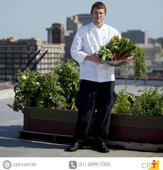 Horta no terraço - temperos, hortaliças e legumes plantados em canteiros ou vasos