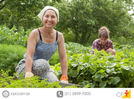 A agricultura familiar adotou a agricultura natural como um sistema de exploração agrícola por meio de tecnologias alternativas