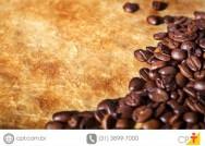 Viçosa sedia evento mundial de qualidade do café