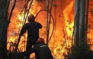 A cada 10 segundos surge um novo foco de incêndio no Brasil.