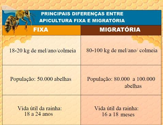 Tabela com as diferenças entre Apicultura Fixa e Apicultura Migratória