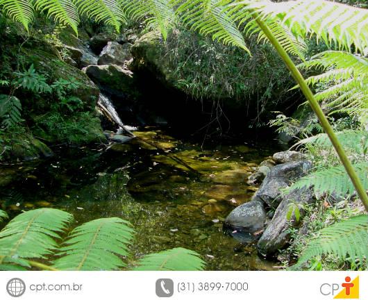 Durante a seca, é bastante comum a redução da vazão de água das nascentes, ou ainda, o seu pleno esgotamento
