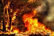 Quais as melhores medidas de prevenção de incêndios?