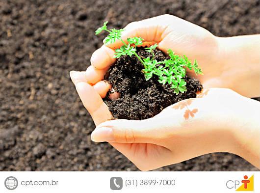 Produzir alimentos orgânicos é respeitar o homem e o meio ambiente, pois todas as atividades que envolvem a agricultura orgânica não contaminam o solo nem a água