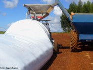 Silo-bolsa para o armazenamento de milho é excelente alternativa para o produtor rural