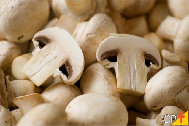 Cogumelo champignon