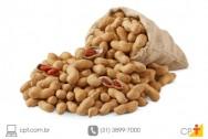 Plantação de amendoim - manejo das plantas daninhas