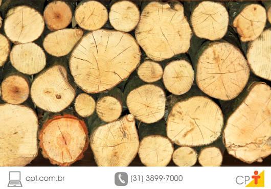 As madeiras resinosas são as melhores madeiras de construção, devido à sua resistência mecânica, mas precisam de um tratamento conhecido como desidratação para não apodrecerem