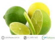 Como combater a Cochonilha no limão Taiti