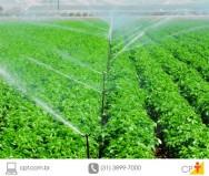As vantagens da irrigação localizada