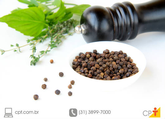 Os leitos de enraizamento das mudas de pimenta-do-reino devem ser cobertos para proteção contra a insolação excessiva