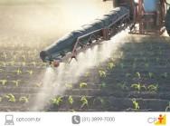 Aplicativo criado por mineira reduz gasto de água em plantações