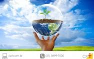 Marco legal da biodiversidade entra em vigor em novembro