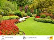 Tem um jardim? Dicas para economizar água