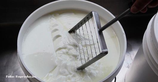 Saiba o que faz o leite coalhar