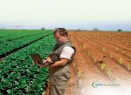 Software auxilia na elaboração de projetos de irrigação