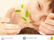 Comemore diferente o 21 de setembro: plante uma árvore!