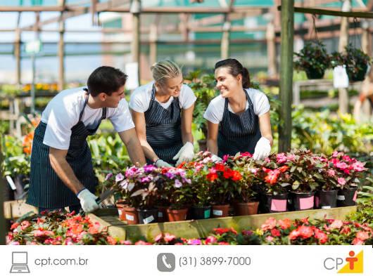 Irrigação por alagamento na produção de flores
