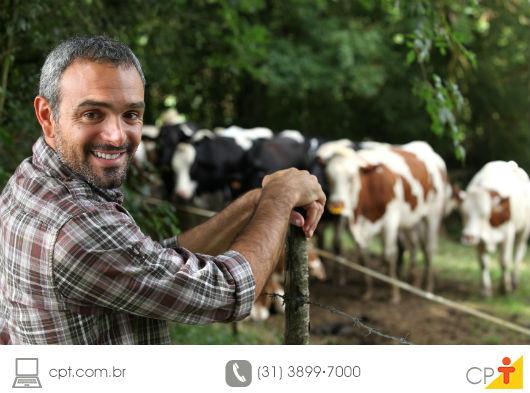 Implantar uma fábrica de ração na fazenda é vantajoso?