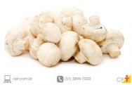Cogumelo medicinal - lavagem, branqueamento e tratamento do A. blazei