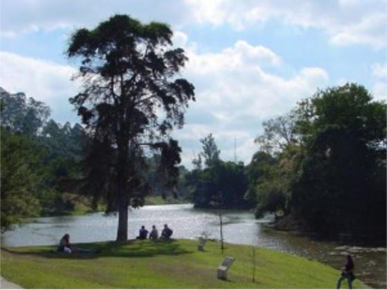 Vista da Lagoa