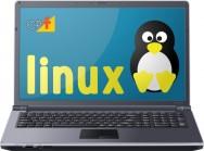 Por que escolher o Linux? Quais são suas vantagens?