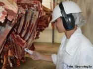 cuidado sanitário na produção de carne