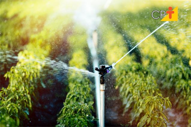 Irrigação na agricultura