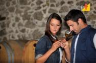 Defeitos do vinho - você sabe identificá-los?