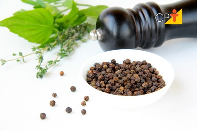 Plantas medicinais que curam doenças