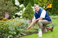 Irrigação de jardins e campos esportivos