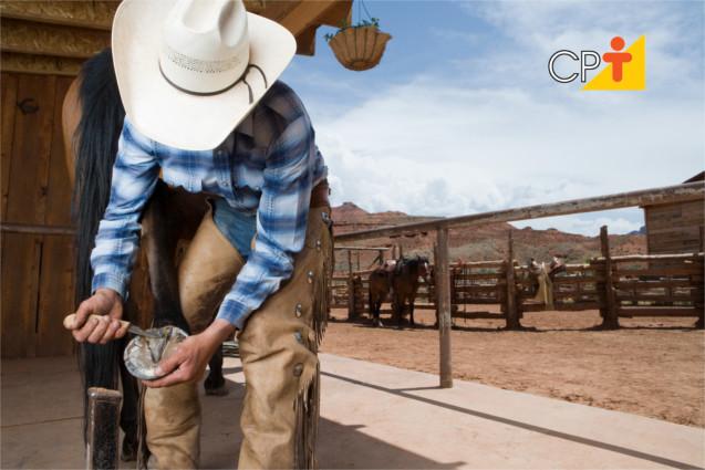 Como colocar ferradura em cavalos