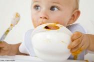 Bebês entre 1 e 2 anos: 10 dicas de como lidar com eles