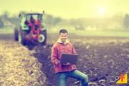 Bokashi: o que é, como preparar e como aplicar na agricultura orgânica