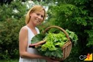 11 adubos orgânicos para hortas urbanas