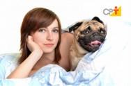 Como acontece a comunicação entre cães e humanos?