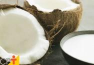 Como ganhar dinheiro com a produção de coco?