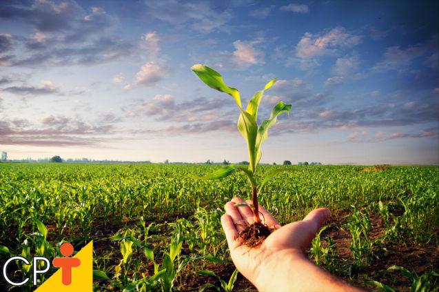 Zoneamento agroambiental: o que é e para que serve?   Dicas Cursos CPT