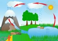 Evapotranspiração: o que é e qual a sua importância para as plantas?