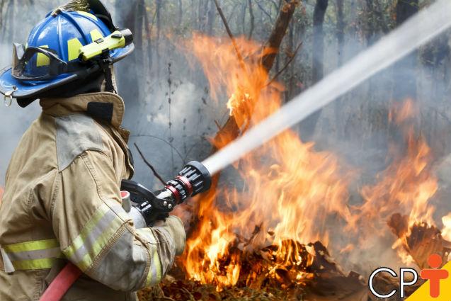 Incêndios florestais: como preveni-los?   Artigos Cursos CPT