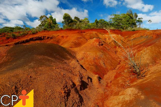 Erosão: processo que desgasta e empobrece os solos   Artigos Cursos CPT