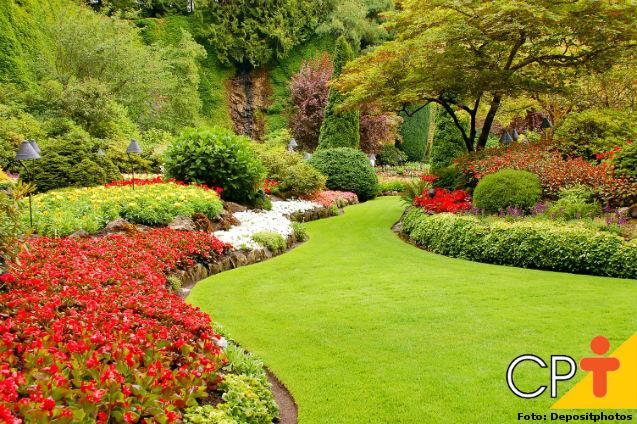 Como combater ervas daninhas em jardins   Artigos Cursos CPT