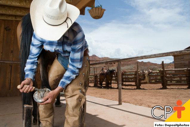 Bleima em cascos de cavalos: como tratar   Dicas Cursos CPT