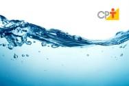 Hoje é 22 de março - Dia Mundial da Água