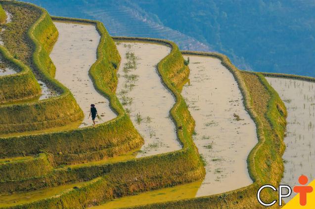 Terraceamento evita a erosão dos solos?   Dicas Cursos CPT