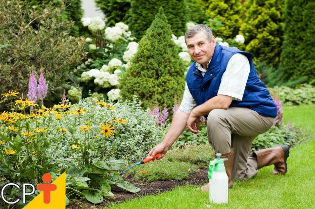 Quero implantar um jardim: como nutrir o solo?   Dicas Cursos CPT