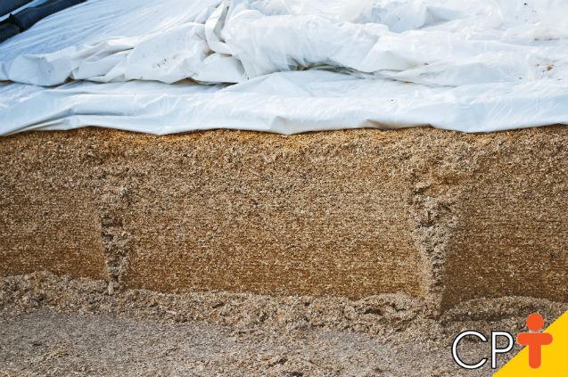 Conservação de alimentos por ensilagem: como funciona?   Artigos Cursos CPT