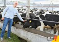 Cevada na ração de vacas leiteiras reduz custos de produção
